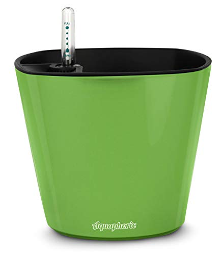 "Aquaphoric Self Watering Planter 5"" + Fiber Soil = Foolproof Indoor"
